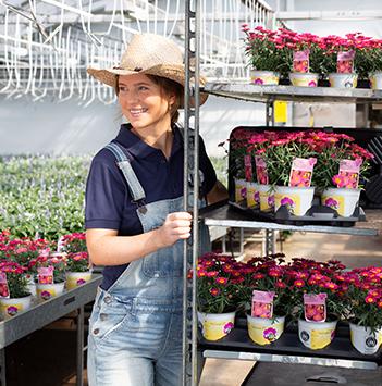 blomster-dyrket-i-norge-gartneri-stativ-potteplanter.jpg