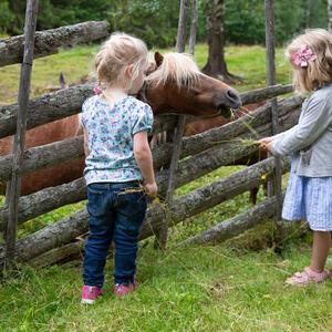Snilsberg Familiepark Ringsaker