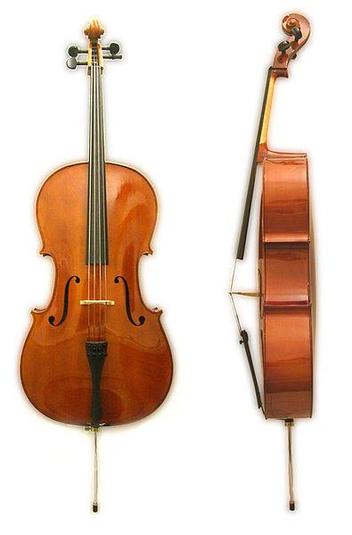 l-cello_front_side.jpg