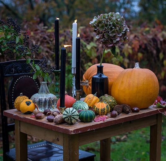 halloween-oppsats-gresskar-paa-bord.jpg