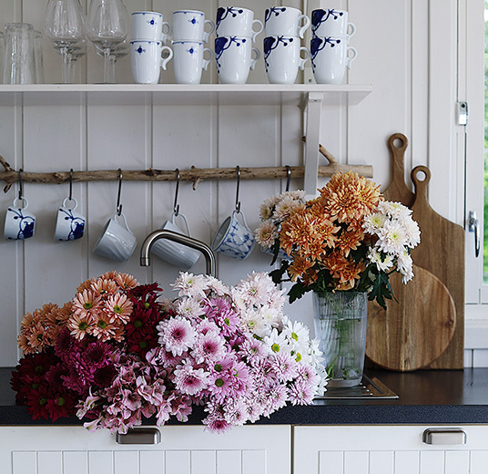 dekorasjon-paa-kjoekken-krysantemum-som-snittblomst-floriss.jpg