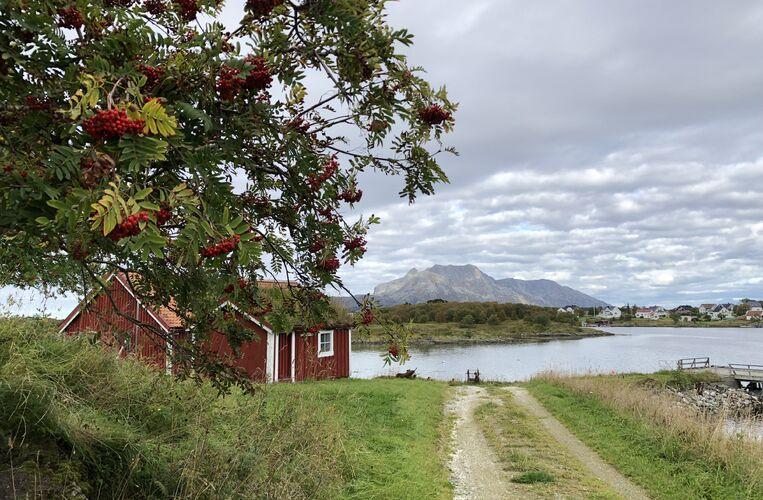 Høst på Herøy bygdesamling