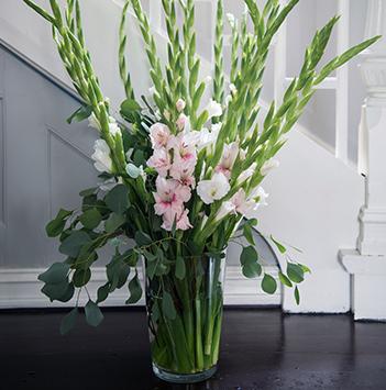 gladioler-dsc1814-floriss.jpg