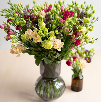 lisianthus-floriss.jpg