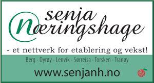Logo Senja Næringshage