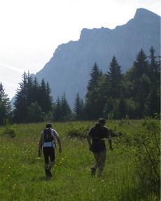 Trail_461x575